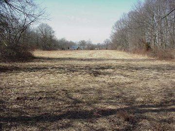 Commercial Property Back Lot